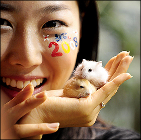 Year of the Rat image courtesy of Chosun.com