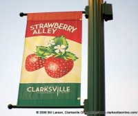 strawberry-alley-1