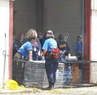 Tennessee Puppy Mill Raid