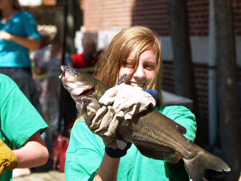 At the worlds biggest fish fry captn there be catfish races this ones a sure winner meet javas joy publicscrutiny Images