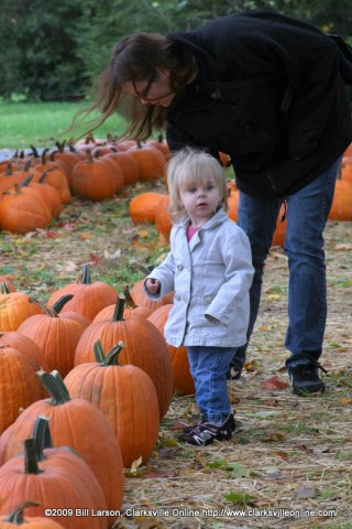 A mother and daughter look for the perfect Pumpkin at Boyd's Pumpkin Patch on Saturday October 10th.
