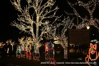 After weeks of dedicated work by Clarksville Department Parks and Recreation staff, Christmas on the Cumberland shines brightly