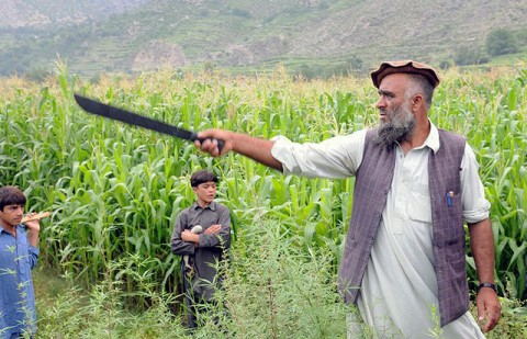 An Afghan community leader points to the boundary of the crops outside Combat Outpost Monti in eastern Afghanistan's Kunar Province during a meeting with International Security Assistance Forces Aug. 17th. Certain crops will be cut down to provide food for animals impacted by recent floods. (Photo by U.S. Army Staff Sgt. Gary A. Witte, 300th Mobile Public Affairs Detachment)