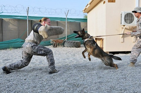 Staff Sgt. Sabrina Lindahl and Doly. (Photo by U.S. Army Spc. Richard Daniels Jr., Task Force Bastogne Public Affairs)