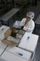 A Hemlock Semiconductor worker packages polysilicon to be shipped to a customer.