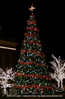 The City of Clarksville Tennessee's Christmas Tree