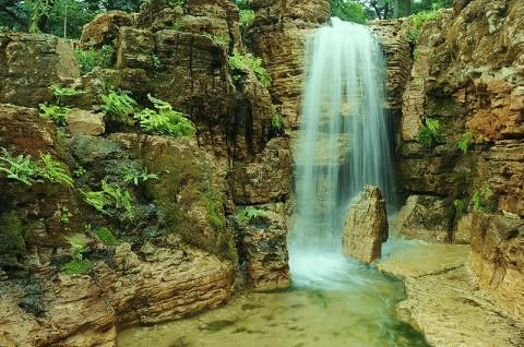 Anthony Archer-Wills's water garden.