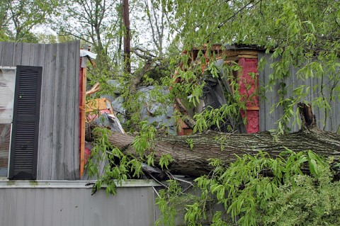 Two trees fell down on this trailer located on Batts Lane. (Photo by Jim Knoll-CPD)