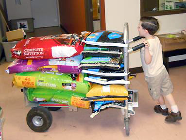 4-year old volunteer Zachary Shaver tries not to take out a wall while maneuvering several hundred pounds of dog food. (Photo by Amy Shaver)
