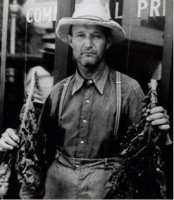 """Montgomery County Tobacco Farmer Holding Tobacco Leaves.""  This photo was taken in Montgomery County, Tennessee, probably near the late 1800s or early 1900s."