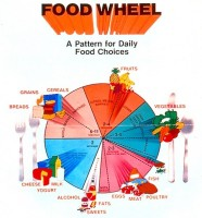 Food Wheel:  A Pattern for Daily Food Choices