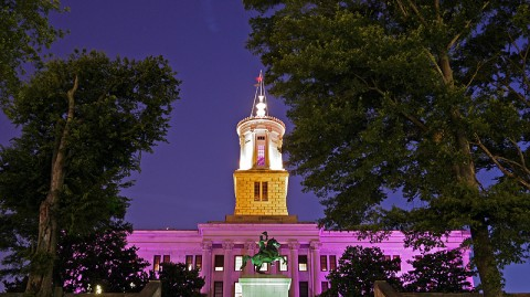 Tennessee State Capitol illuminated in honor of 2010 World Elder Abuse Awareness Day. (Photo by Rob Johnson, State of Tennessee)