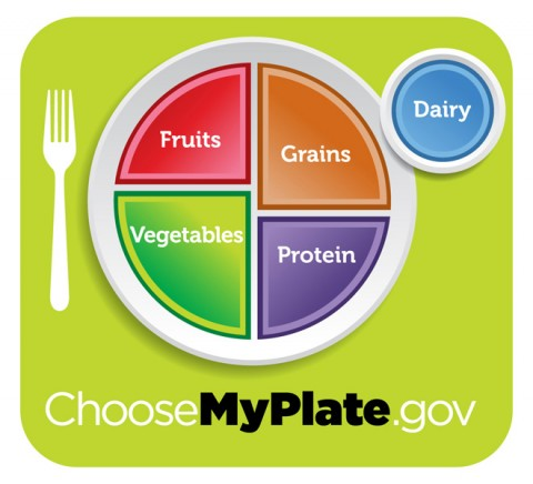 MyPlate icon emphasizes the fruit, vegetable, grains, protein and dairy food groups.