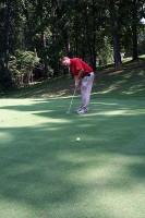 The new Championshiop Bermuda grass greens at Swan Lake Golf Course.