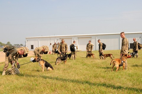 Dog Handlers with 2nd Brigade Combat Team, 101st Airborne Division (Air Assault), rest their Tactical Explosive Detection Dogs after landing at Fort Campbell Army Airfield, Fort Campbell, KY, August 24th. This is the first of two flights returning Combined Task force Strike dog handling Soldiers from Afghanistan to Fort Campbell. (U.S. Army Photo By Spc. Shawn Denham, PAO, 2nd BCT, 101st Abn. Div.)