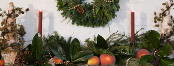 """Make """"green"""" holiday choices when you are shopping, traveling, decorating, sending cards, and choosing gifts. When you save energy and resources, you protect the environment and safeguard health both now and for the future."""