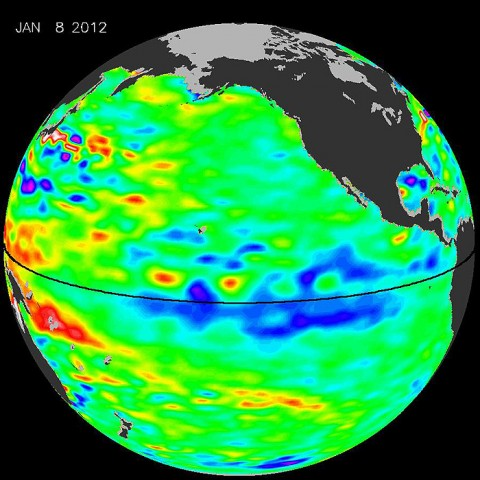 The latest image of sea surface heights in the Pacific Ocean from NASA's Jason-2 satellite shows that the current La Niña is peaking in intensity. Yellows and reds indicate areas where sea surface height is higher than normal (due to warm water), while blues and purples depict areas where sea surface height is lower than normal (due to cool water). Green indicates near-normal conditions. (Image credit: NASA/JPL Ocean Surface Topography Team)