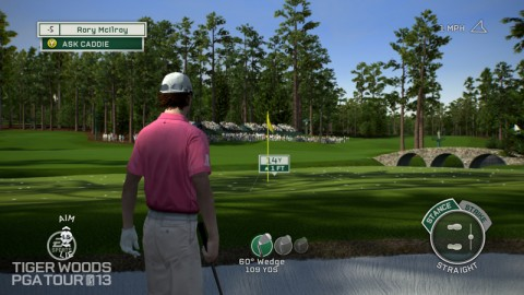 Tiger Woods PGA TOUR® 13: Roy Hitting from the Bunker