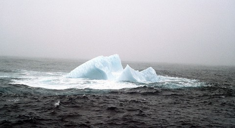 Iceberg off the coast of Newfoundland, 1984. (Image credit: Susan Digby)