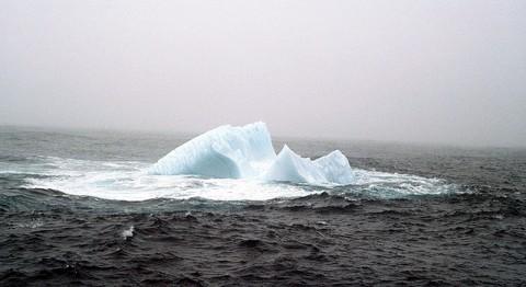 Iceberg off the coast of Newfoundland, 1984. (Image credit: Susan Digby)
