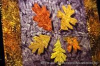 Justine Burris' Floating Leaves