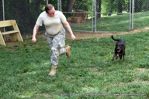 A soldier from the Warrior Transition Unit exercises one of the animals currently in custody at the Montgomery County Animal Control Facility