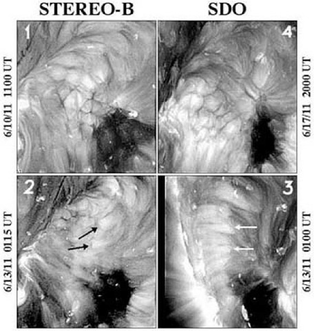 The top images show coronal cells as viewed from above by STEREO-B (on the left) and SDO (on the right). Their diameters are about 18,000 miles. The bottom images show the same region as viewed almost simultaneously from the sides by STEREO-B (on the left) and SDO (on the right). The heads of the black and white arrows mark identical points on the sun as seen from STEREO-B and SDO, respectively. (Credit: NASA/STEREO/SDO/NRL)