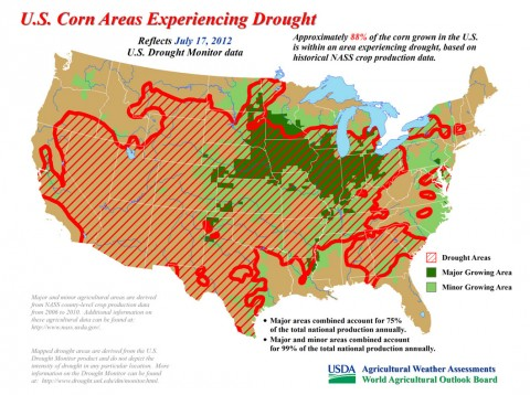 Approximately 88% of the corn grown in the U.S. is within an area experiencing drought, based on historical NASS crop production data. (Click to enlarge map)