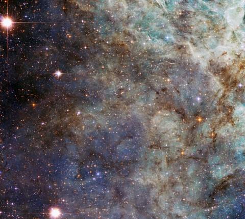 A close up of the main cloud in the Tarantula Nebula.