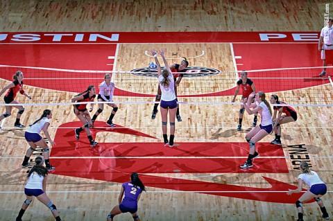 Austin Peay Women's Volleyball. (Courtesy: Brittney Sparn/APSU Sports Information)
