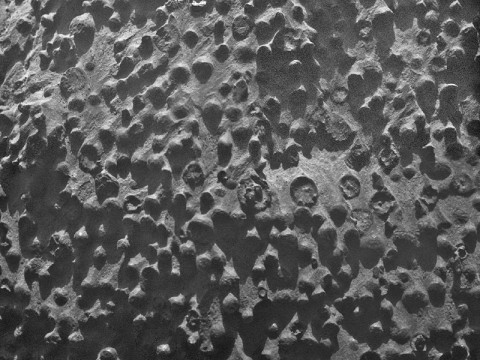 Small spherical objects fill the field in this mosaic combining four images from the Microscopic Imager on NASA's Mars Exploration Rover Opportunity. (Image credit: NASA/JPL-Caltech/Cornell Univ./ USGS/Modesto Junior College)