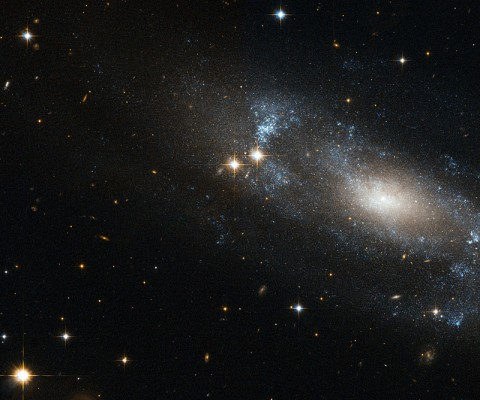 NASA's Hubble Telescope Eyes a Loose Spiral Galaxy. (ESA/NASA/Hubble)