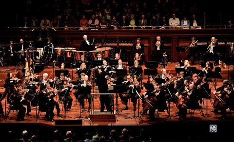 Nashville Symphony. (Photo by Mickey Dobo)
