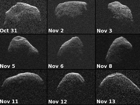 Nine new radar images of near-Earth asteroid 2012 PA8 were obtained between October 31st and November 13th, 2012, with data collected by NASA's 230-foot-wide (70-meter) Deep Space Network antenna at Goldstone, CA. (Image credit: NASA/JPL-Caltech)