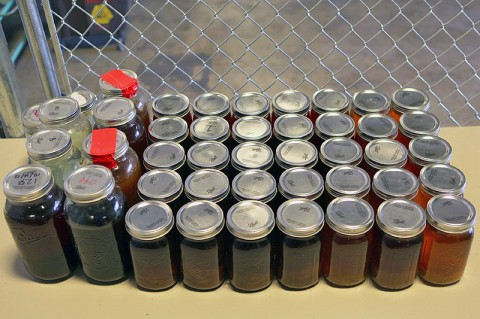 44 jars of Moonshine discovered at Clarksville residence. (Photo by CPD-Agent Daryl Pace)