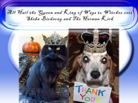 The 2012 Wags to Witches Fur Ball Bash Photo Contest Winners
