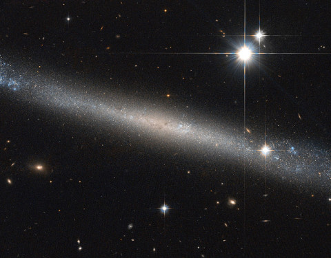 Hubble Space Telescope takes image of spiral galaxy IC 2233.