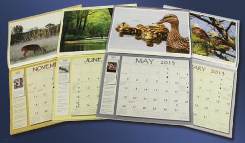 2013-2024 Tennessee Wildlife Calendar Photo Contest