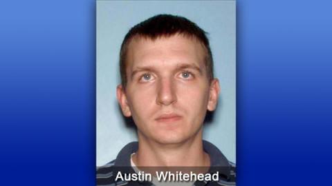 Austin Whitehead