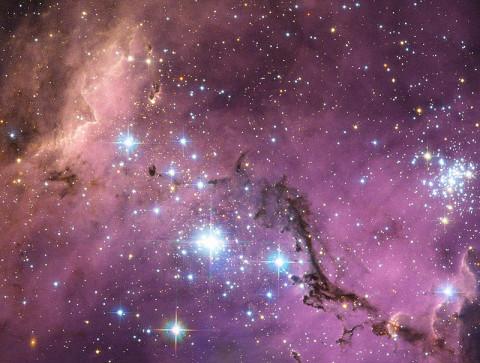 Star forming regions in the Large Magellanic Cloud. (Credit: ESA/NASA/Hubble)