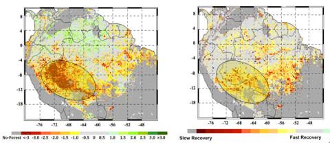 At left, the extent of the 2005 megadrought in the western Amazon rainforests during the summer months of June, July and August as measured by NASA satellites. The most impacted areas are shown in shades of red and yellow. The circled area in the right panel shows the extent of the forests that experienced slow recovery from the 2005 drought, with areas in red and yellow shades experiencing the slowest recovery. (Image credit: NASA/JPL-Caltech/GSFC)