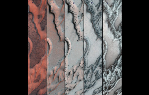 The High Resolution Imaging Science Experiment (HiRISE) camera on NASA's Mars Reconnaissance Orbiter snapped this series of pictures of sand dunes in the north polar region of Mars. The area covered in each of the five panels is about 0.8 mile (1.3 kilometers) wide. (Image Credit: NASA/JPL-Caltech/Univ. of Arizona)
