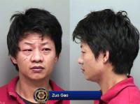 Zuo Gao