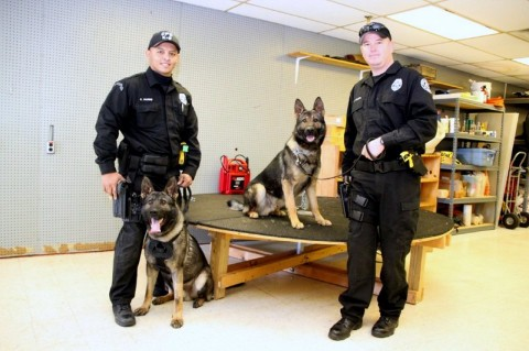 Clarksville Police Department's Newest K-9s Koda and Leo with their handlers Officer Kendrick Harris and Officer Mark Wilson.  (Photo by CPD-Jim Knoll)