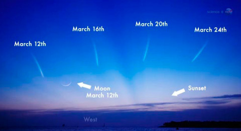 For those in search of comet L4 PANSTARRS, look to the west after sunset in early and mid-March. This graphic shows the comet's expected positions in the sky. (Image credit: NASA)
