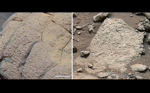 These fine-grained sediments, likely deposited under water, suggest that Mars could have supported ancient microbial life.  Data gathered by Curiosity indicate a habitable environment characterized by neutral pH, chemical gradients that would have created energy for microbes, and a distinctly low salinity, which would have helped metabolism if microorganisms had ever been present. (Image Credit: NASA/JPL-Caltech/Cornell/MSSS)