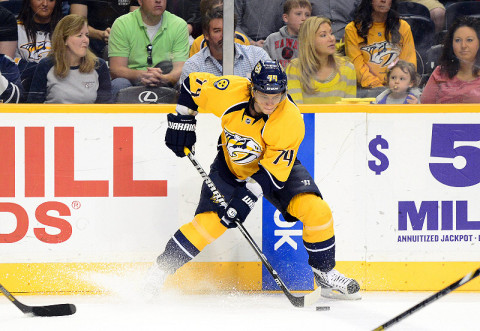 Nashville Predators left wing Sergei Kostitsyn (74). (Don McPeak - USA TODAY Sports)