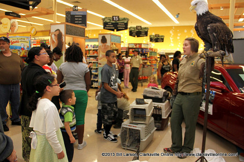 A Tennessee State Parks Interpretive Specialist introduces the crowd to Captain Bligh, the Bald Eagle from Reelfoot Lake State Park.
