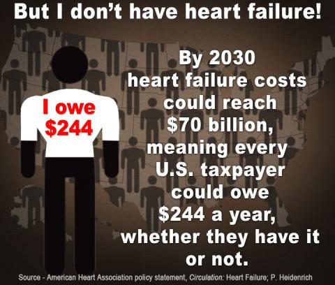 Infographic - Heidenrich-Impact of Heart Failure  (Copyright American Heart Association)
