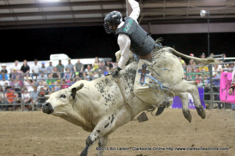 Bull riding at the 2013 Clarksville Rodeo
